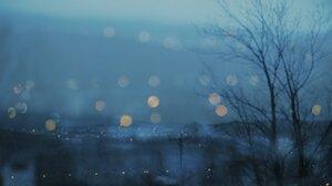 Trees Nature Bokeh Gloomy 2048x1365 Wallpaper