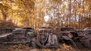 Outdoors Car Old Wreck Rust Trees Leaves Vehicle 2560x1440 Wallpaper