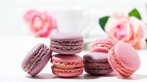 Macaron Sweets 2048x1367 Wallpaper