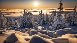 Fog Landscape Nature Snow Sun Sunbeam Winter 2000x1334 Wallpaper