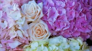 Earth Flower Hydrangea Pastel Pink Flower Rose White Flower 6016x4016 Wallpaper