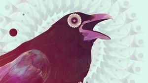 Animal Raven 1920x1080 Wallpaper