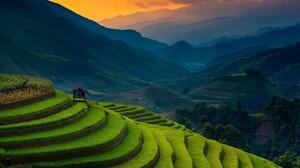 Landscape Nature Rice Paddy Terraces Sunset Field Mist Green Vietnam Sunlight 1920x1280 Wallpaper