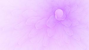 Fractal Petal Pink 2048x1536 Wallpaper