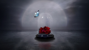 Artistic Butterfly Glass Jar Red Rose Rose 1920x1200 Wallpaper