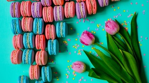 Flower Macaron Pink Flower Sweets Tulip 2655x1770 Wallpaper