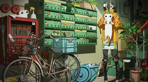Bike Cat 2500x1778 Wallpaper