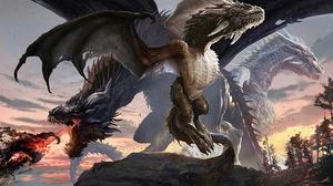 Dragon 2560x1440 wallpaper