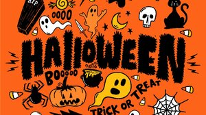 Pumpkin Ghost Orange Background Halloween Cats Skull 2016x1584 Wallpaper