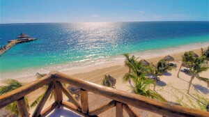 Beach Horizon Ocean Palm Tree Resort Sea Tropical Turquoise 1600x1071 Wallpaper