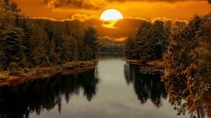 Forest Sun Reflection 2048x1327 wallpaper