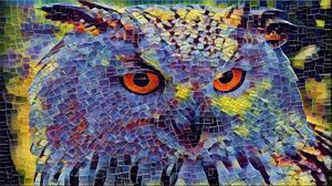 Animal 1920x1080 Wallpaper