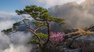 Cloud Landscape Mountain Rock South Korea 2000x1335 Wallpaper