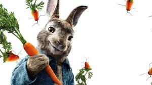 Carrot Peter Rabbit Rabbit 3840x2160 Wallpaper