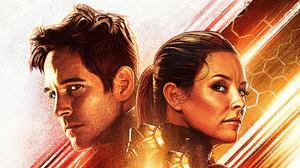 Ant Man Evangeline Lilly Hope Pym Marvel Comics Movie Paul Rudd Scott Lang Superhero Wasp Marvel Com 2804x1577 Wallpaper