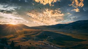 Sky Bird Moon Nature Landscape 5760x3240 wallpaper