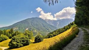 Nature Landscape Mountains Trees Grass Plants Road Clouds Sky Austria 1920x1080 Wallpaper