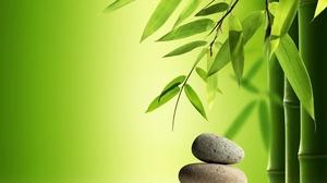 Bamboo 3840x2160 Wallpaper