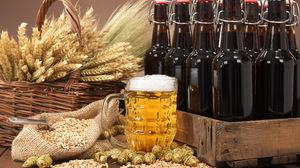 Alcohol Beer Bottle Drink Glass Still Life 9000x6007 Wallpaper