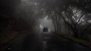 Driver Car Forest Mist Green Nature Rain Gloomy 2048x1365 Wallpaper