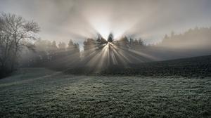 Nature Sunbeam 2981x1677 Wallpaper