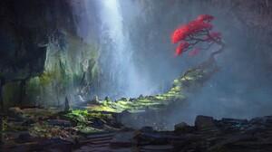 Tree 2560x1440 Wallpaper