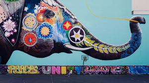 Elephant Colors Colorful 2048x1365 Wallpaper