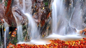 Fall Leaf Nature Rock Water Waterfall 1920x1200 Wallpaper