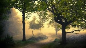 Road Nature Fog 2048x1300 Wallpaper