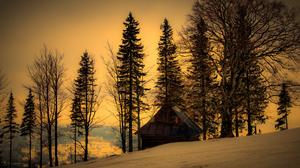 House Tree Snow Twilight Dusk 3312x2208 wallpaper