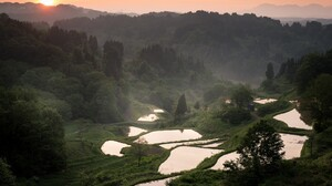 Photography Landscape Nature Trees Mist Sunlight Mountains Terraced Field Rice Paddy 1600x1200 Wallpaper