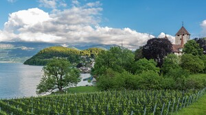 Landscape Water Nature Village Vineyard 1920x1080 Wallpaper
