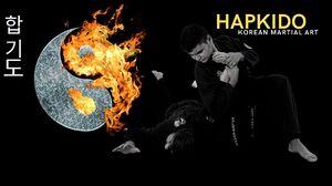 Hapkido Korean Korean Martial Arts 1920x1080 Wallpaper