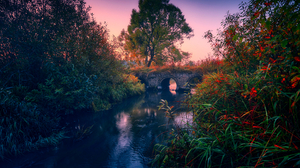 Heger Novel Bridge Trees Bushes Plants Nature Water Photography Landscape Outdoors Sunset River 1920x1263 Wallpaper