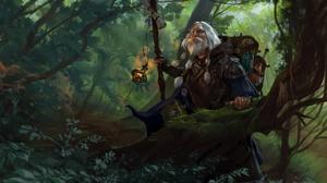 Beard Forest Man White Hair Wizard 1920x1095 wallpaper