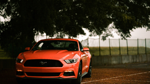 Car Ford Ford Mustang Muscle Car Red Car Vehicle 8222x5210 Wallpaper
