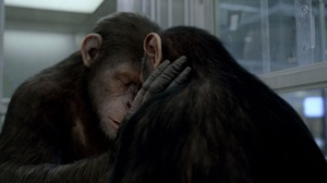 Movie Rise Of The Planet Of The Apes 1920x1082 wallpaper