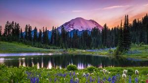 Flower Lake Landscape Meadow Mountain National Park Sunset Tree Usa 5472x3434 Wallpaper