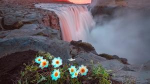 Nature River White Flower Sunset 2048x1475 wallpaper
