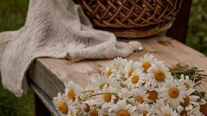 Flowers Plants Baskets Outdoors 1374x2064 wallpaper