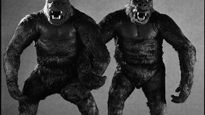 King Kong 1440x1080 Wallpaper