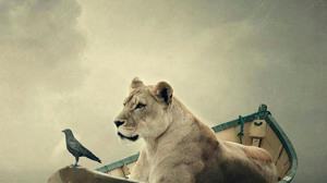 Animals Boat Lion Tiger Birds 1688x3000 Wallpaper