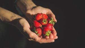 Food Strawberry 4460x2973 Wallpaper