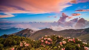 Nature Mountain Flower Cloud 2048x1365 wallpaper