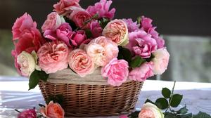 Basket Flower Peony Pink Flower Rose 2000x1330 Wallpaper