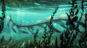 Watermother Jian Digital Art Fantasy Art Underwater Creature Fish 1600x901 Wallpaper