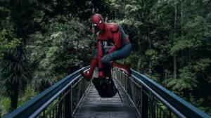 Spider Man 5472x3648 Wallpaper