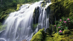 Greenery Waterfall 1920x1080 Wallpaper