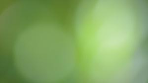 Circle Gradient Green Light 2021x1339 Wallpaper