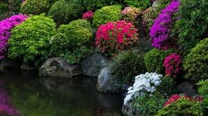 Japan Garden Plants Stones Flowers 2700x1800 Wallpaper